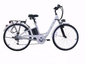 Bicicletta Elettrica E BIKE a Pedalata Assistita-0